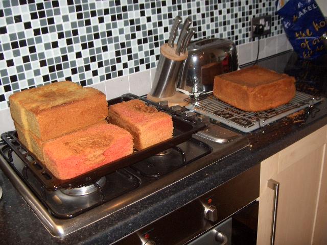 Sponge, sponge and more sponge